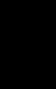 1972 Western Piedmont Symphony Logo